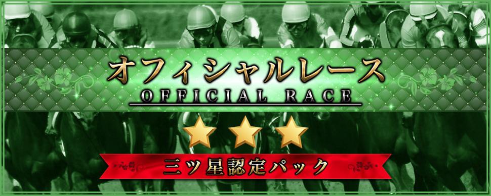 オフィシャルレース3つ星